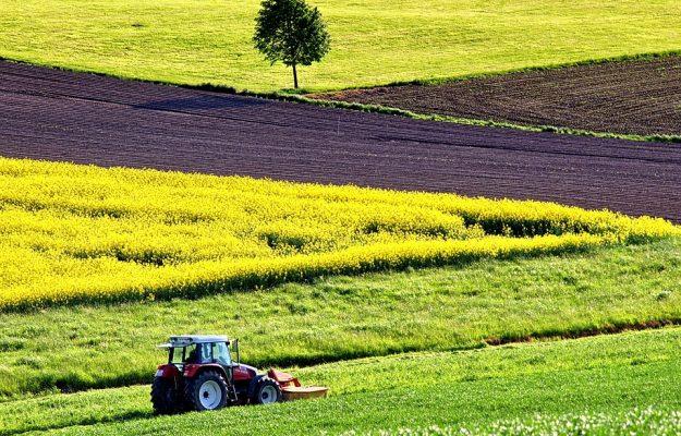 AGRICOLTURA BIOLOGICA, MADE IN ITALY, Non Solo Vino