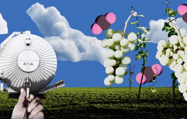 CO2, Germania, GLOBAL WARMING, vino, Mondo