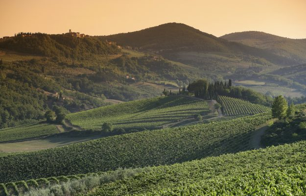APULIA, CHIANTI CLASSICO, LIGURIA, NEW YORK TIMES, WINE, News