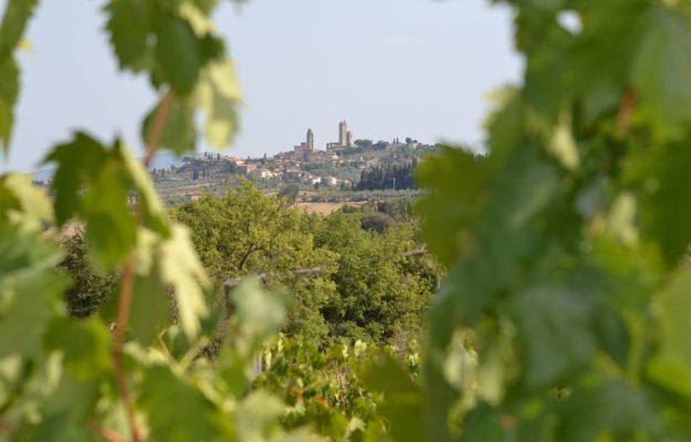 VINITALY, VINO ITALIANO, WINE SPECTATOR, Italia