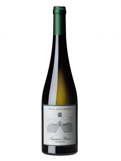 BREGANZE, VENETO, VILLA ANGARANO, Su i Vini di WineNews