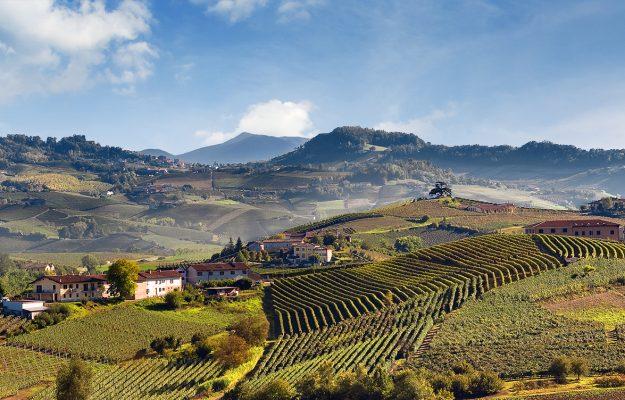 FUTURO, PIEMONTE, PIEMONTE LAND, vino, Italia