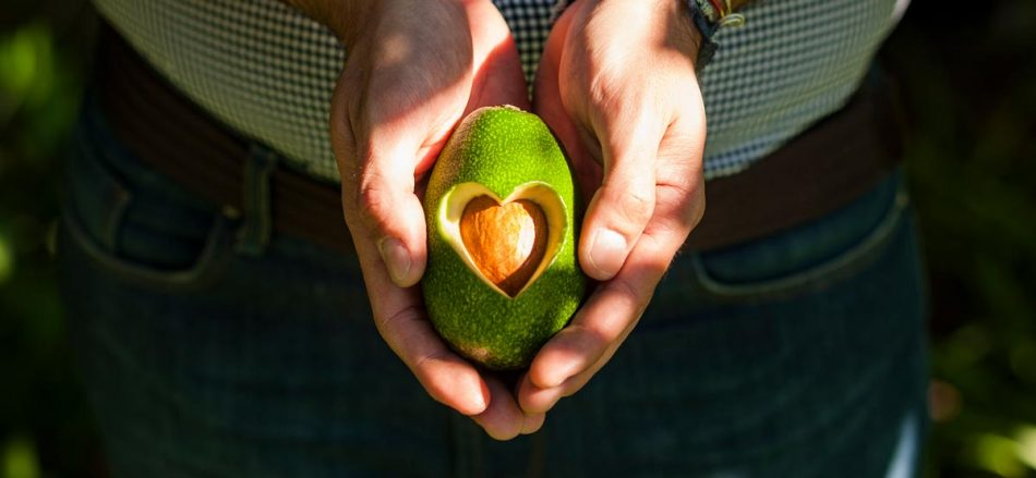 AVOCADO, CATANIA, SICILIA AVOCADO, La dispensa, Su i Vini di WineNews