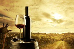 Il vino italiano tiene sui mercati, ma non mancano le preoccupazioni per il futuro