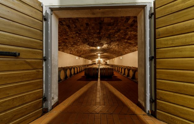CANTINA ITALIA, HARVEST, ICQRF, STOCKS, WINE, News