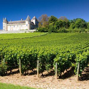 Francia, 170 milioni di euro per il vino contro il Covid. 155 per la distillazione di crisi