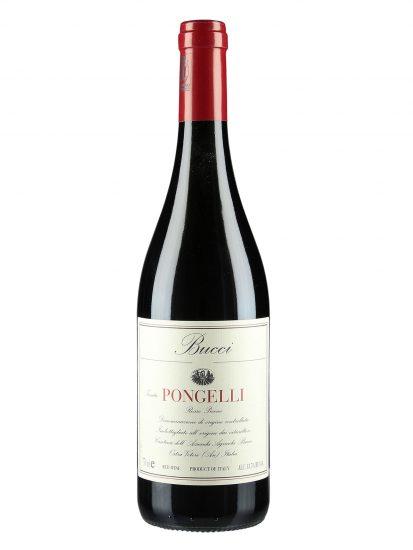 BUCCI, MARCHE, NON SOLO BIANCHI, Su i Vini di WineNews