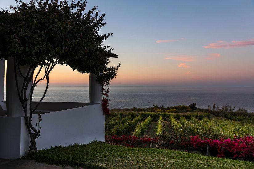 CAPOFARO LOCANDA&MALVASIA, SALINA, TASCA D'ALMERITA, Ristoranti ed Enoteche, Su i Vini di WineNews
