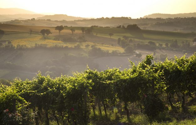 ITALY, LASTMINUTE.COM, WINE LOVERS, News