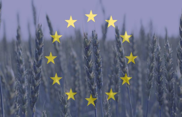 AGRICULTURE, CENTINAIO, Cia, Coldiretti, Confagricoltura, DE CASTRO, EUROPEAN ELECTIONS, PAC, UE, News