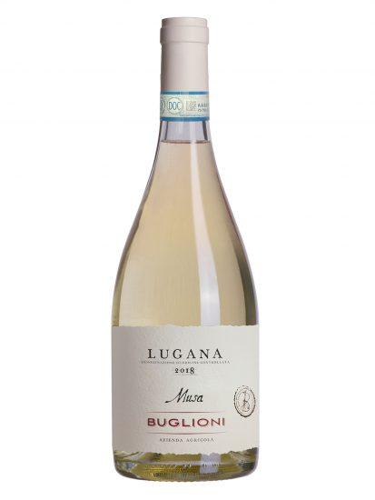 BUGLIONI, LUGANA, Su i Vini di WineNews