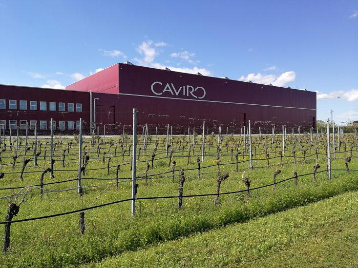 The turnover of the number two Italian wine player, Caviro, is 330 ...