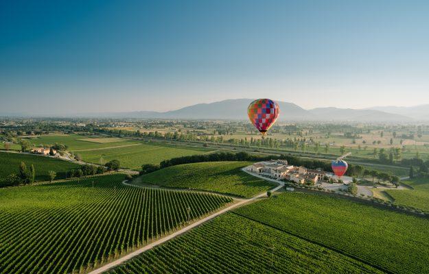 FUTURE, WINE, WINE TOURISM, News