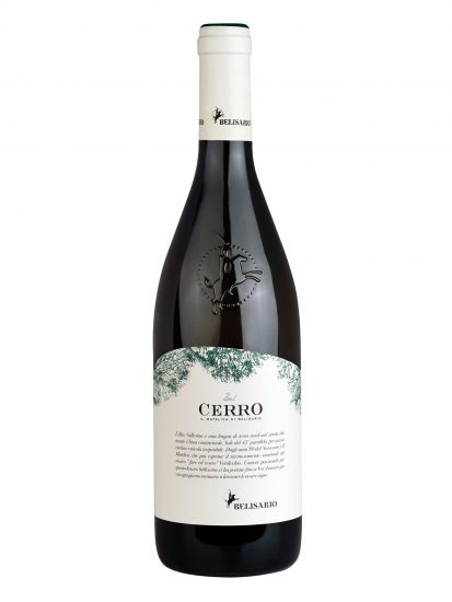 BELISARIO, MATELICA, VERDICCHIO, Su i Quaderni di WineNews