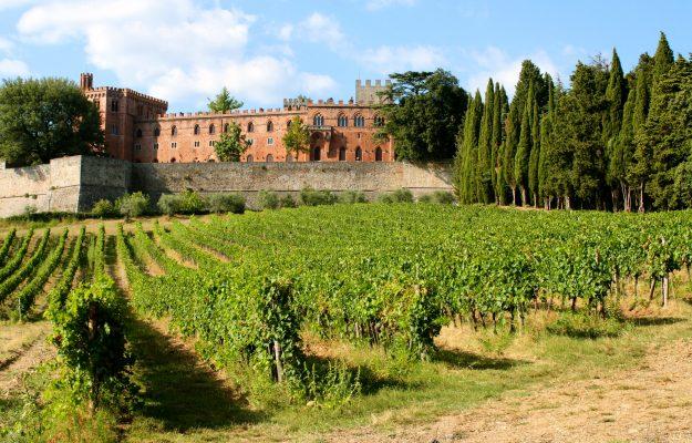 CORONAVIRUS, GAIOLE IN CHIANTI, vino, Italia