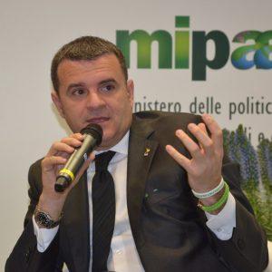 Centinaio, un anno di Ministero tra Agricoltura e Turismo, tra bilanci e priorità future