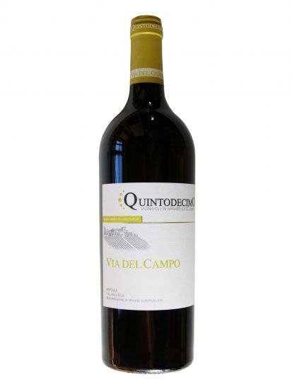 FALANGHINA, IRPINIA, QUINTODECIMO, Su i Vini di WineNews