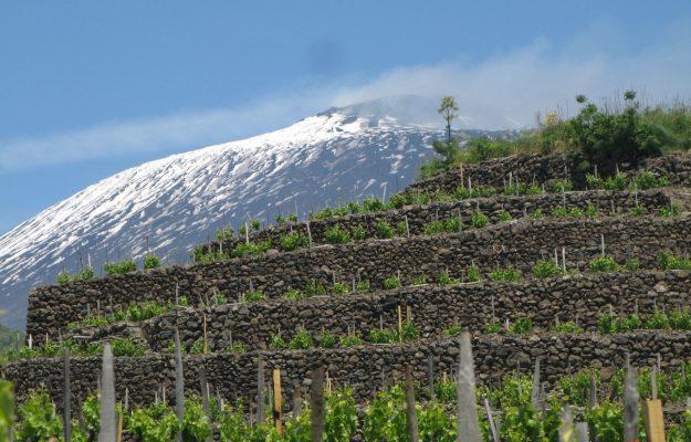 DECANTER, ETNA, NERELLO MASCALESE, WEEKEND, WINE, WINE LOVERS, wine territories, WINE TOURISM, News