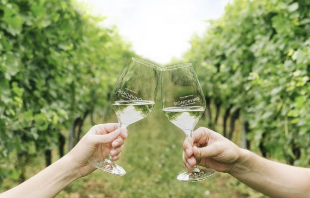 ORGANIC WINE, SIGNORVINO, WINE, News