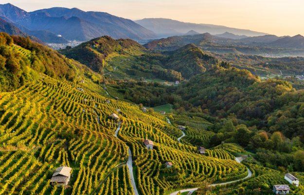 COLLINE CONEGLIANO VALDOBBIADENE, PROSECCO, UNESCO, WINE, News