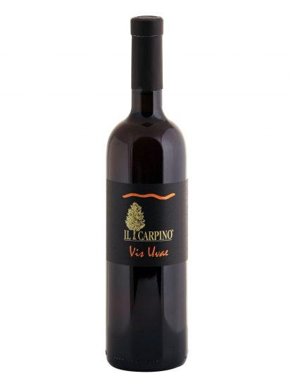 IL CARPINO, PINOT GRIGIO, VENEZIA GIULIA, Su i Vini di WineNews