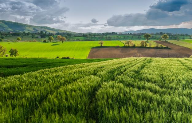 AGRICOLTURA ITALIANA, AGRINSIEME, INFRASTRUTTURE, NORD, Non Solo Vino