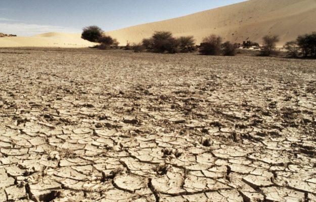 AGRICOLTURA SOSTENIBILE, CIBO, CLIMA, FONDAZIONE BARILLA, ONU, Non Solo Vino