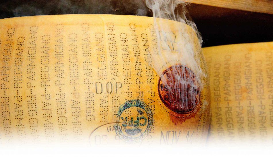 PARMIGIANO REGGIANO, A tavola, La dispensa, Su i Vini di WineNews