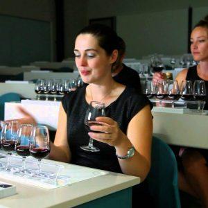 Wset, 50 anni e una degustazione da record: a Londra in 350 per 4 vini e 4 piatti