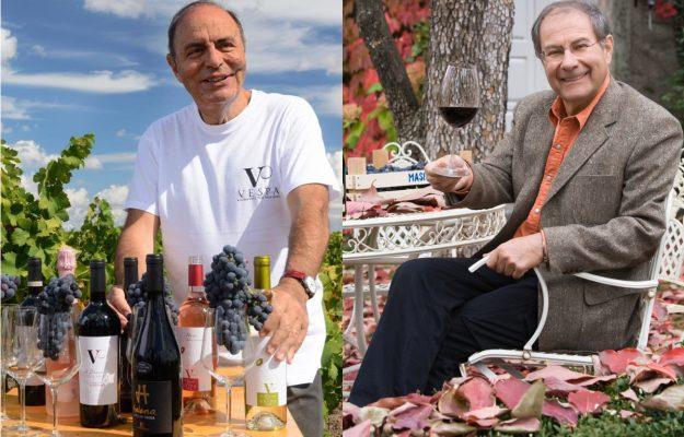 AMARONE, BRUNO VESPA, PRIMITIVO, SANDRO BOSCAINI, TERREGIUNTE, vino, Italia
