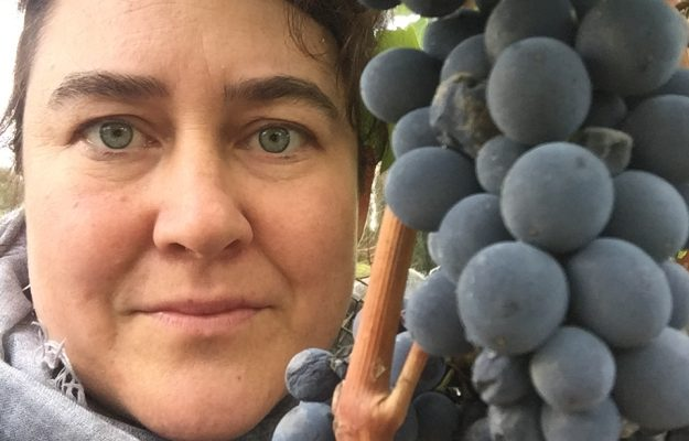 alcohol content, ENVIRONMENTAL SUSTAINABILITY, GREEN EMBLEM, ITALY, MONICA LARNER, pandemic, THE WINE ADVOCATE, WINE, News