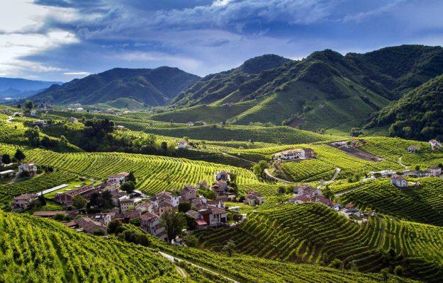 COLLINE CONEGLIANO VALDOBBIADENE, PROSECCO DOCG, UNESCO, vino, ZAIA, Italia