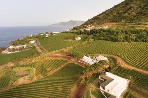 Viaggio nella viticoltura (e nell'agricoltura) eroica delle Isole Eolie, tra Malvasia e non solo