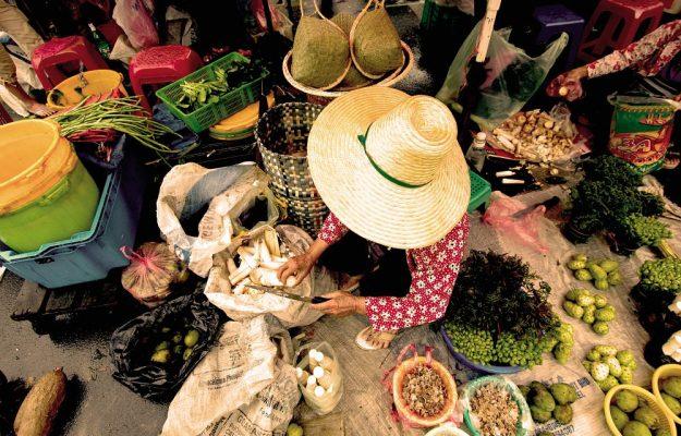 CIBO, CULTURA, MANIFESTO, SLOW FOOD, Non Solo Vino