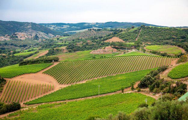 CHIANTI, CHIANTI CLASSICO, GRAN SELEZIONE, vino, Italia