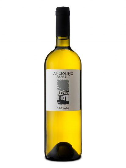 GARGANEGA, MAULE, VENETO, Su i Vini di WineNews