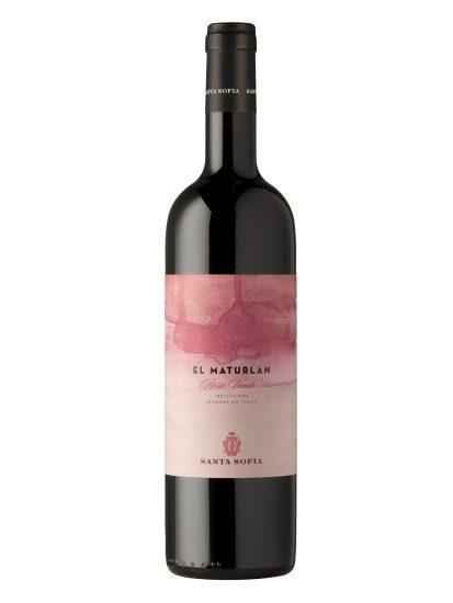SANTA SOFIA, VALPOLICELLA, Su i Vini di WineNews