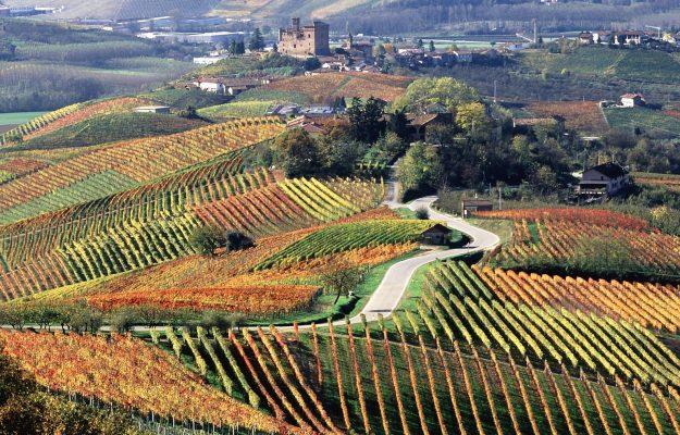 TOURISM, WINE, WINE ENTHUSIAST, News