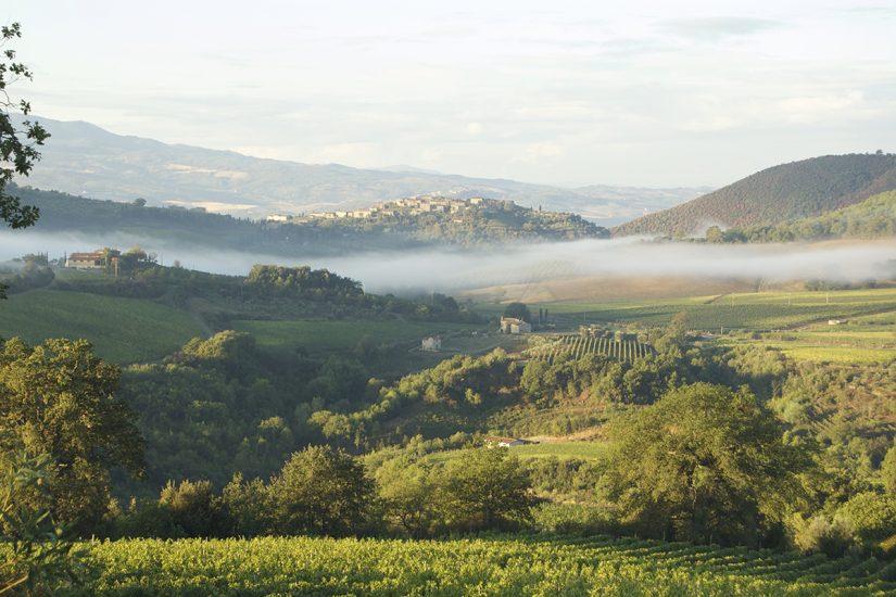 ANNATA, MONTALCINO, TEMPI NUOVI, Su i Quaderni di WineNews