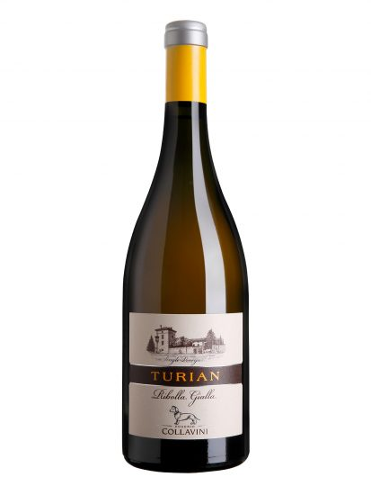 COLLAVINI, FRIULI, Su i Vini di WineNews