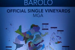 Zonazione, sempre più importante per il futuro dei territori del vino. Parola della critica