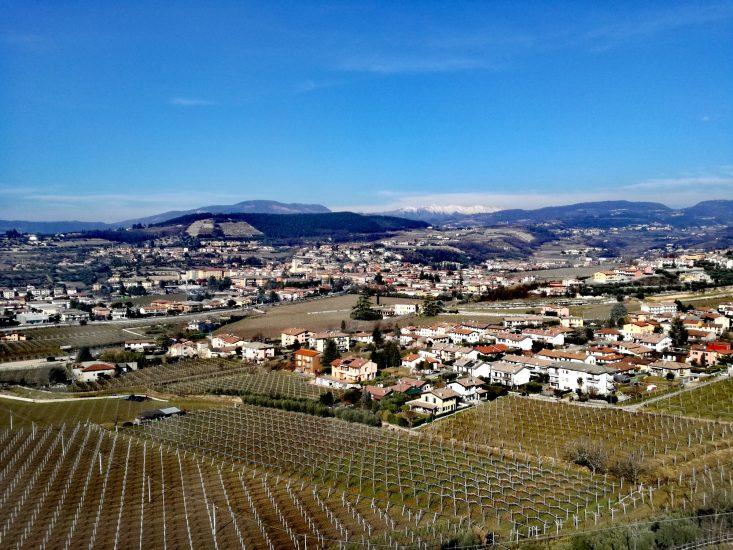 AMARONE, VALPOLICELLA, Su i Quaderni di WineNews