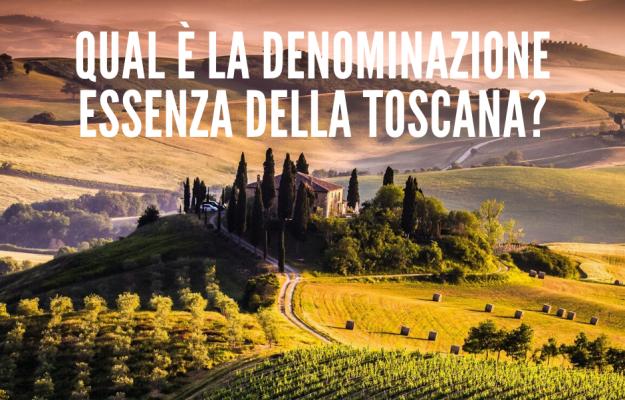 SONDAGGIO DI WINENEWS, TOSCANA, VINO TOSCANO, Italia