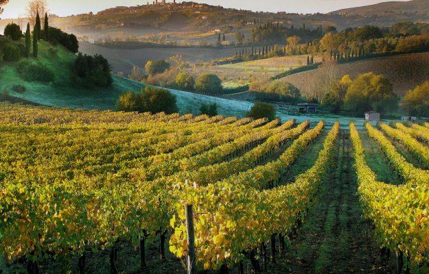 BORGHI, CIBO, Coldiretti, TURISMO, vino, Non Solo Vino