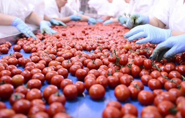 agroalimentare, CIBO, FILIERA, GOLDEN POWER, ITALIA, Non Solo Vino