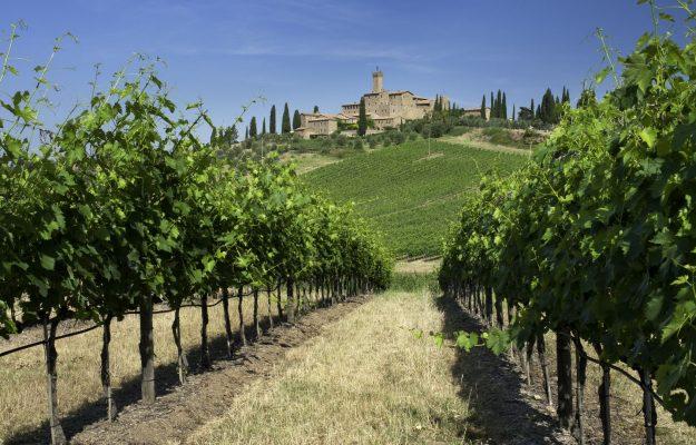 BANFI, CASTELLO BANFI, CLIMATE CHANGE, News