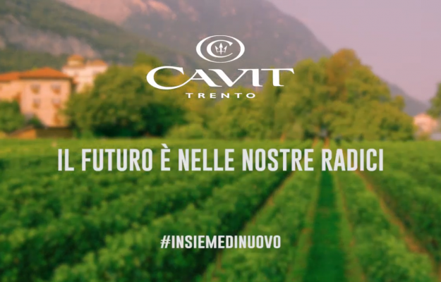 CVIT, MADE IN ITALY, MESSAGGIO, OTTIMISMO, PUBBLICITA, vino, Italia