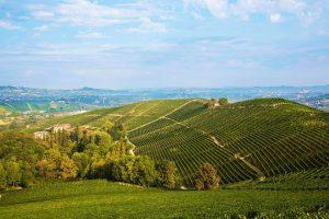 In viaggio con WineNews nella storica tenuta di Fontanafredda, tra le più belle realtà del Barolo