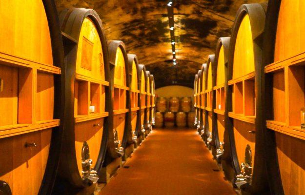 COVID-19, CRISI, DISTILLAZIONE DI CRISI, EXPORT, PAOLO CASTELLETTI, PROMOZIONE, UIV, VENDEMMIA, VENDEMMIA VERDE, vino, Italia
