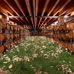 A field of flowers in a winery and a vineyard at the Arena in Verona: Timo Helgert for Pasqua Winery